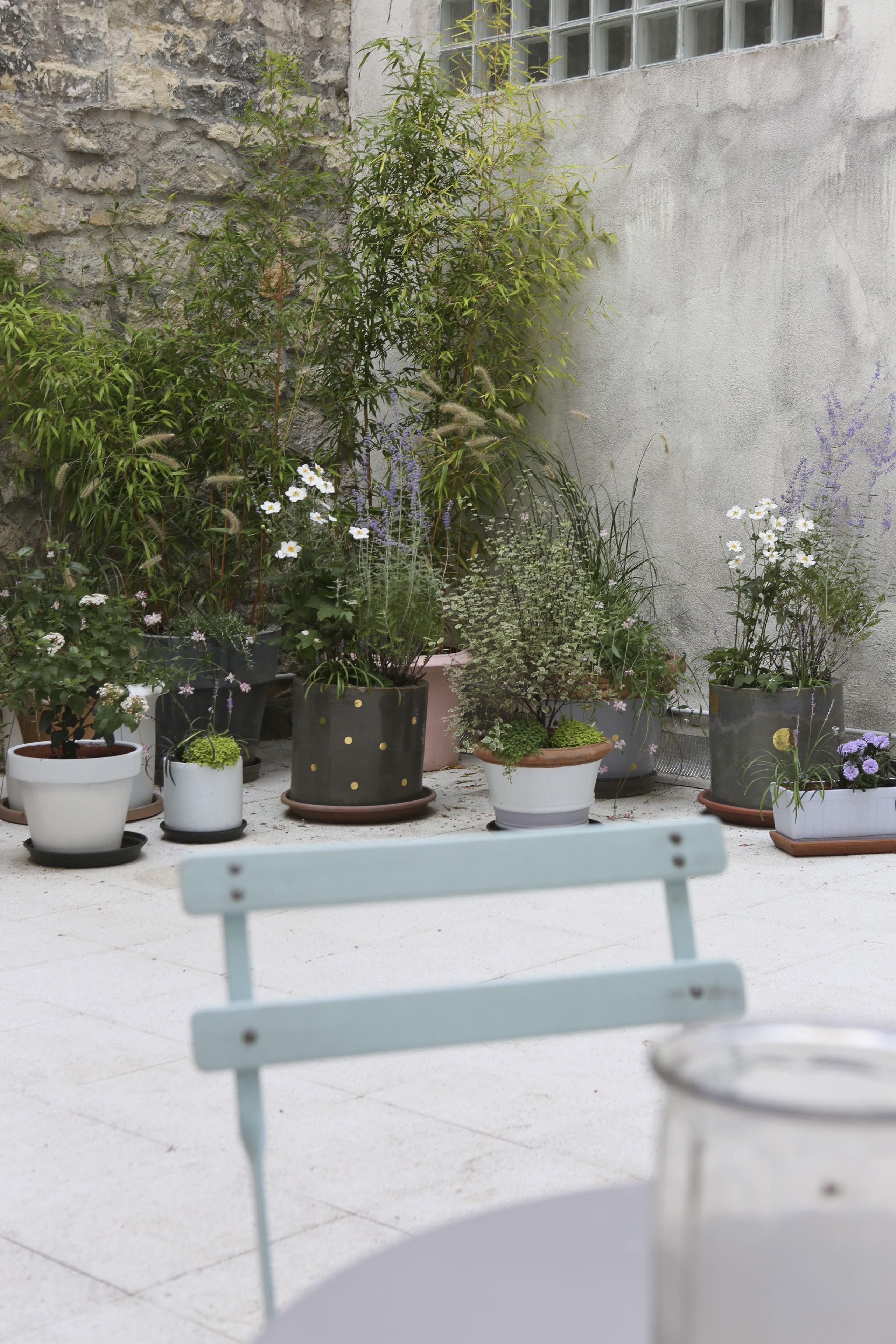 La Jolie Cour Boutique Des Petits Hauts Rue Keller Paris 11e Idees Jardin Jardins Fleurs Balcon