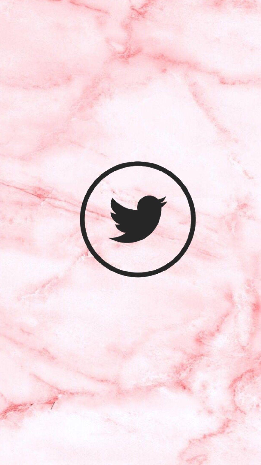 Fundos, Logotipo Instagram, Ícones De Destaque Do