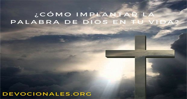 ¿Cómo Implantar La Palabra De Dios En Tu Vida?