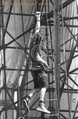 My Favorite Little Monkey Eddie Vedder Pearl Jam