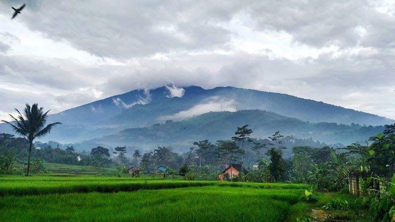 Terpopuler 30 Foto Pemandangan Bukit Keren Inilah 20 Tempat Wisata Alam Paling Instagrammable Di Bogor Download 45 Tempat W Di 2020 Pemandangan Gambar Awan Pantai