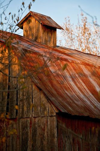 Love this weathered barn.