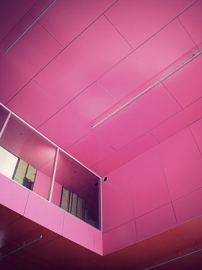 In the PINK...