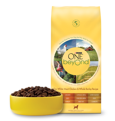 Interesting Facts About Natural Life Dog Food Dog Food Recall
