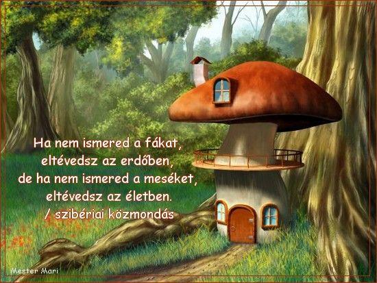 idézetek a mesékről mese hátterek   Google keresés | Mushroom house, Stuffed mushrooms
