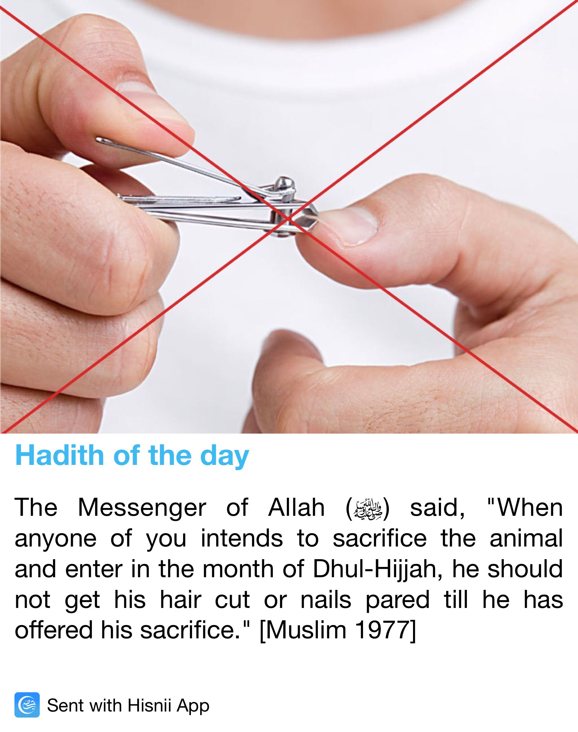Pin on Prophet Muhammad (pbuh), Hazrat Ali (ra) hadith and quotes