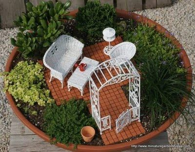 miniature garden plantsoh so cute and such a great idea for