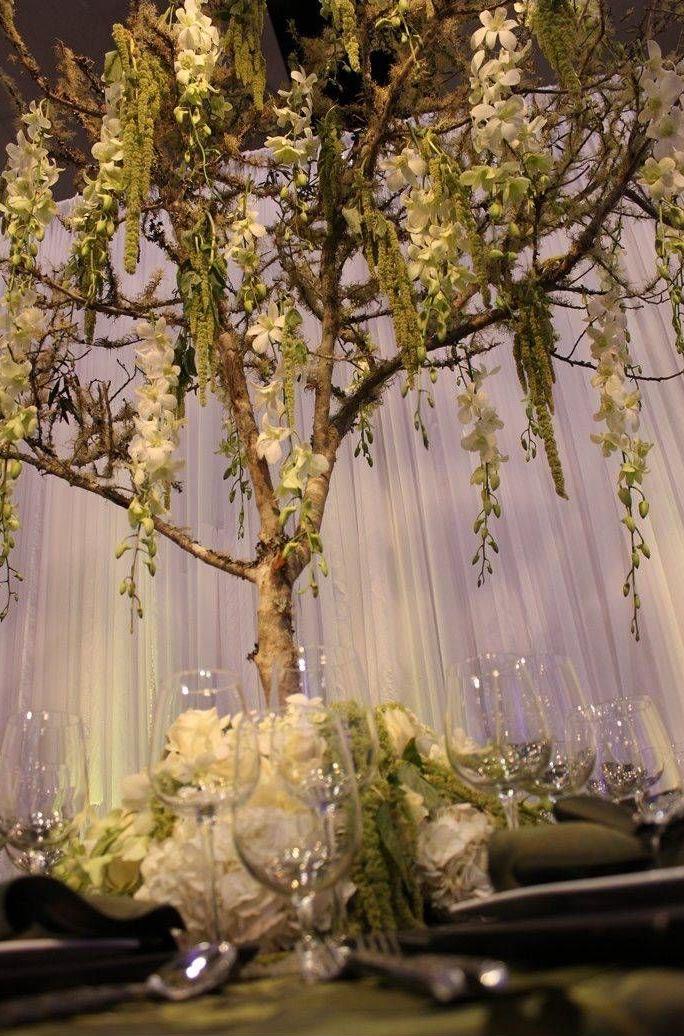 Mystic Wedding Mystic Wedding Hochzeit Modern