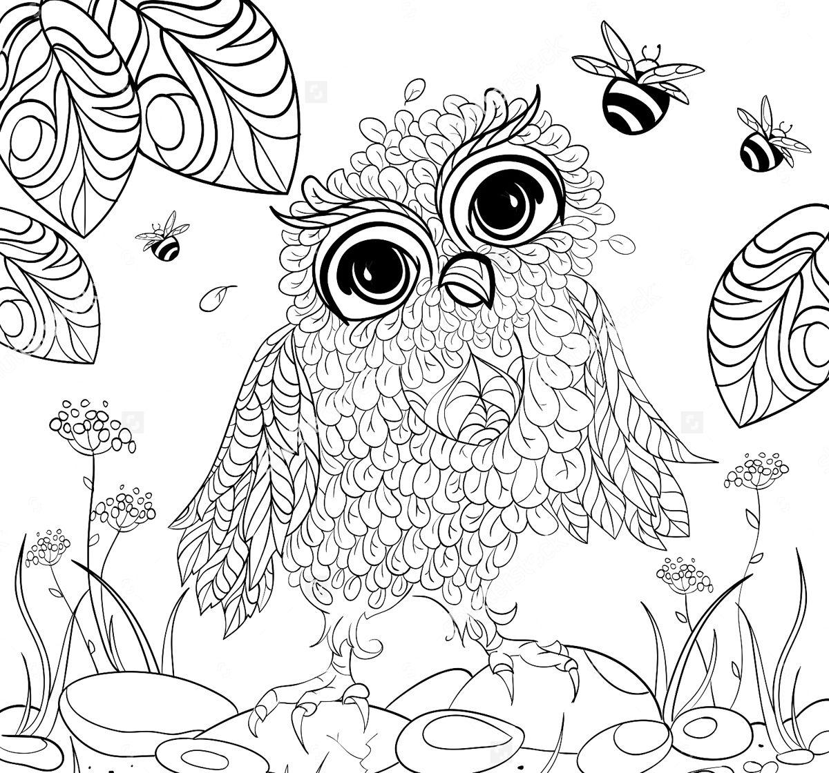 раскраска сова для снятия стресса | Книжка раскраска ...
