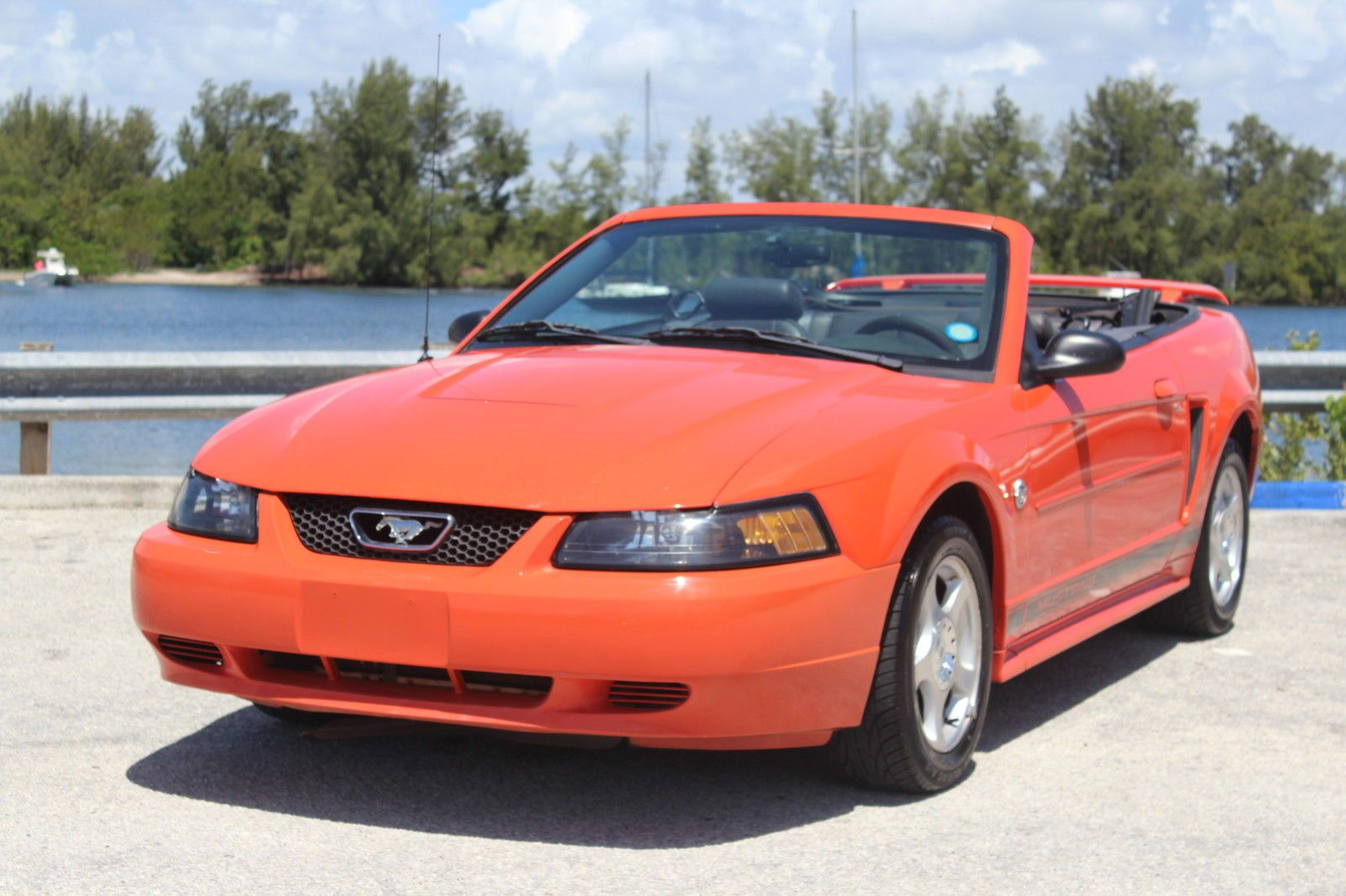 Car Brand Auctioned  Ford Mustang 40th Anniversary 2004 Car Model Ford Mustang Convertible Delux