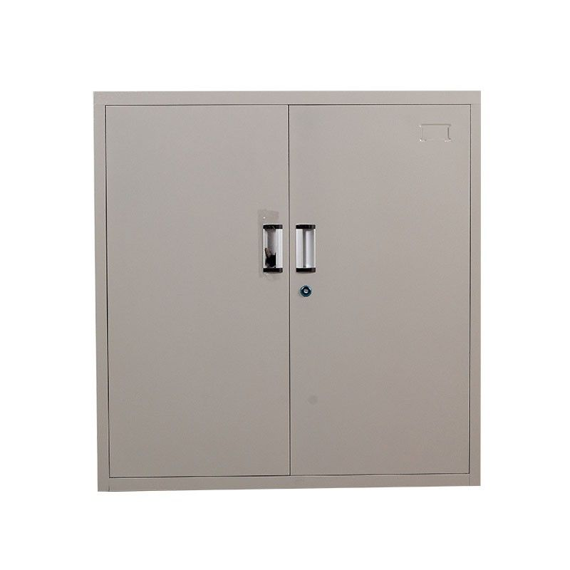 Cheap Metal Office Furniture 2 Doors Steel File Cabinet Fashion