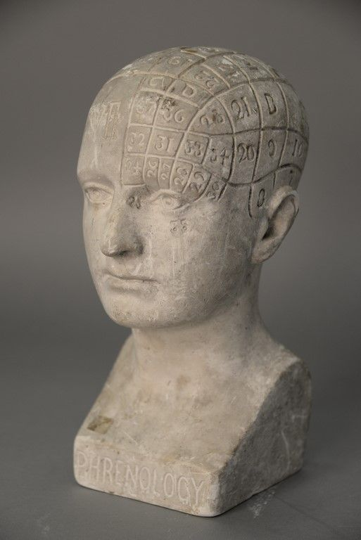 Chalkware Phrenology Head, 19th century with paper label on reverse by Fowler & Wells New York.