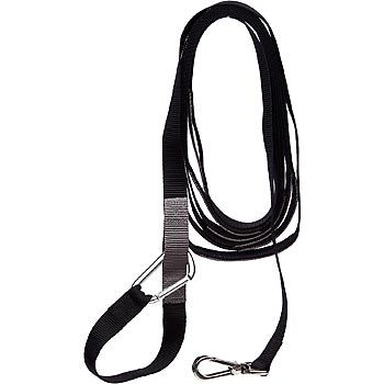 Good2go Adjustable Recall Training Leash For Dogs Petco Petco Dog Collars Leashes Leashes
