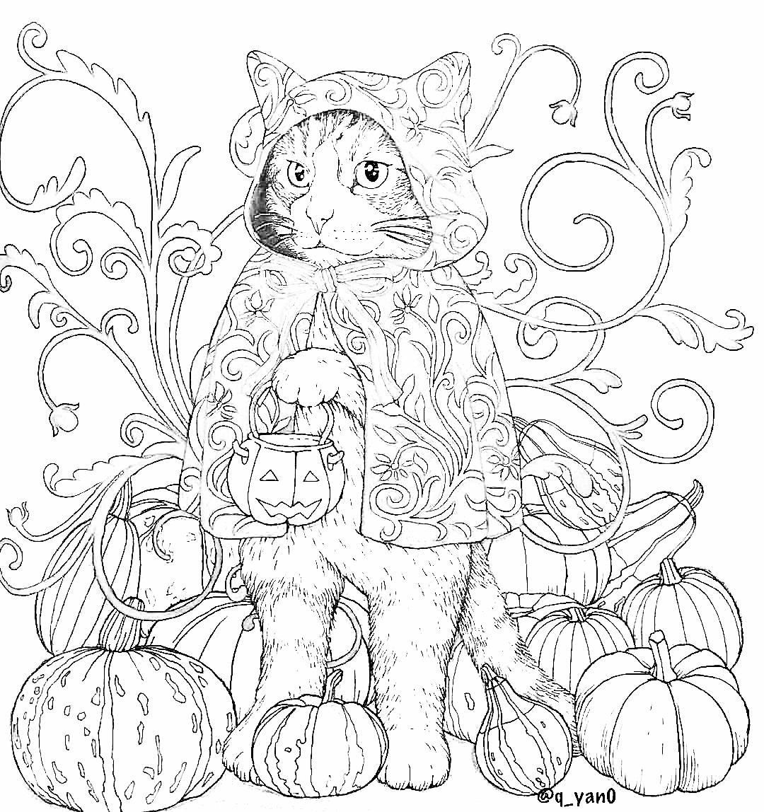 Pin By Robyn Ashby On Blank Coloring Pages For Tutorials Coloring Books Fall Coloring Pages Halloween Coloring Book [ 1148 x 1080 Pixel ]