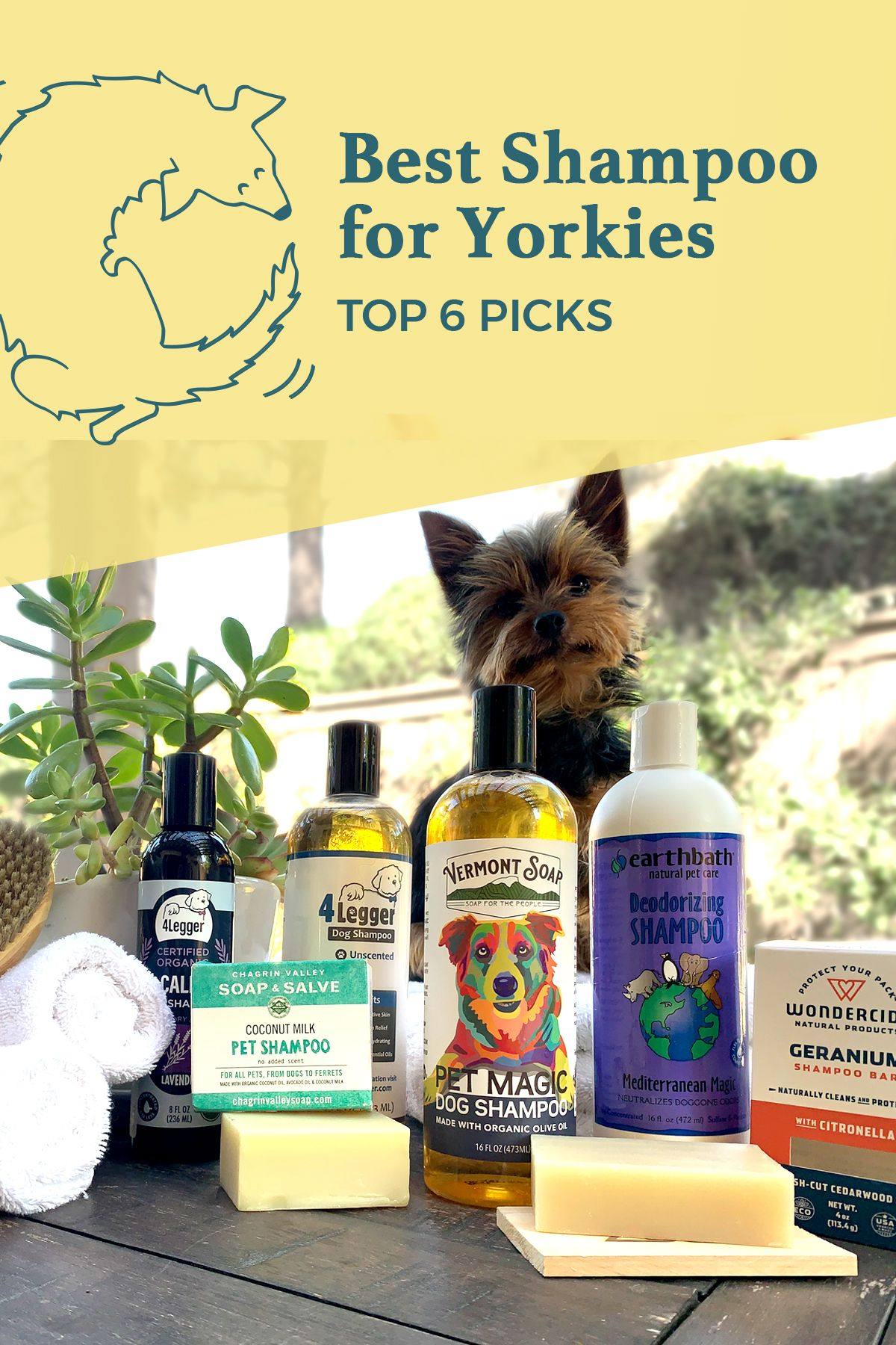 The best Yorkie shampoos are made from highquality
