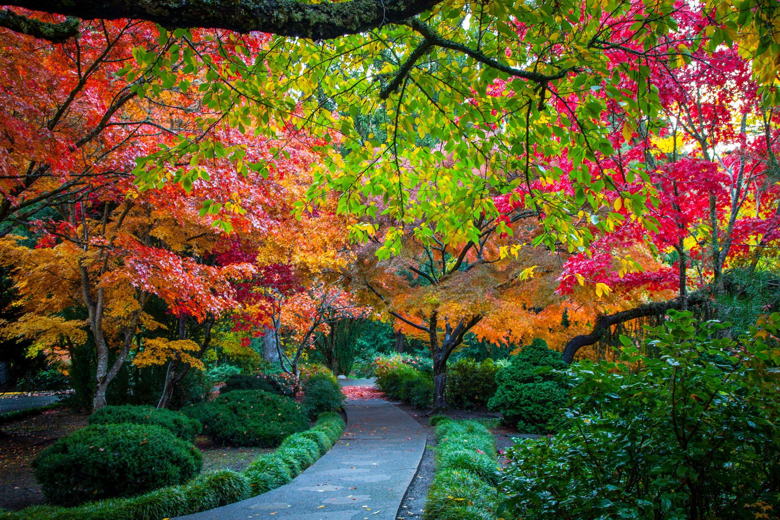 Walkway In The Japanese Garden In Lithia Park Ashland Oregon Oregon Travel Southern Oregon Ashland Oregon