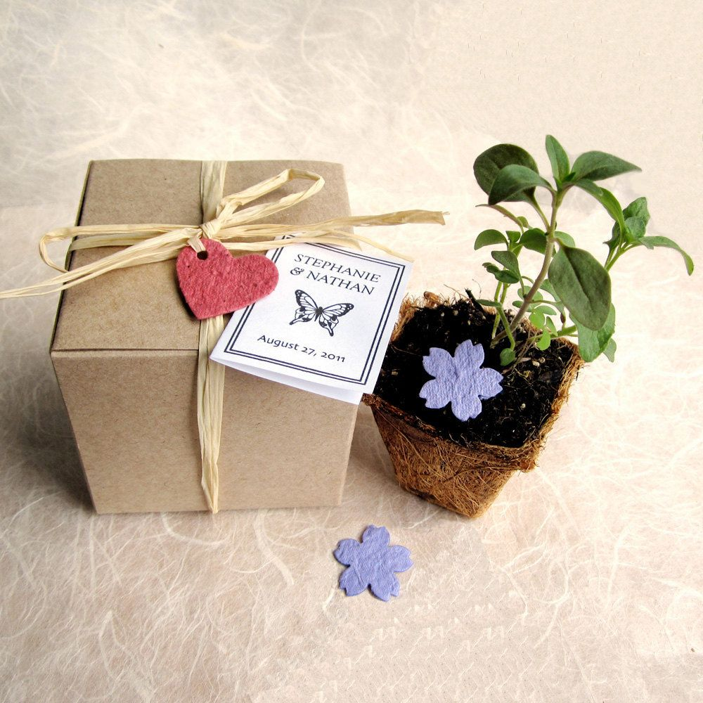 20 Flower Pot Wedding Favors Plantable Seed Paper Confetti And