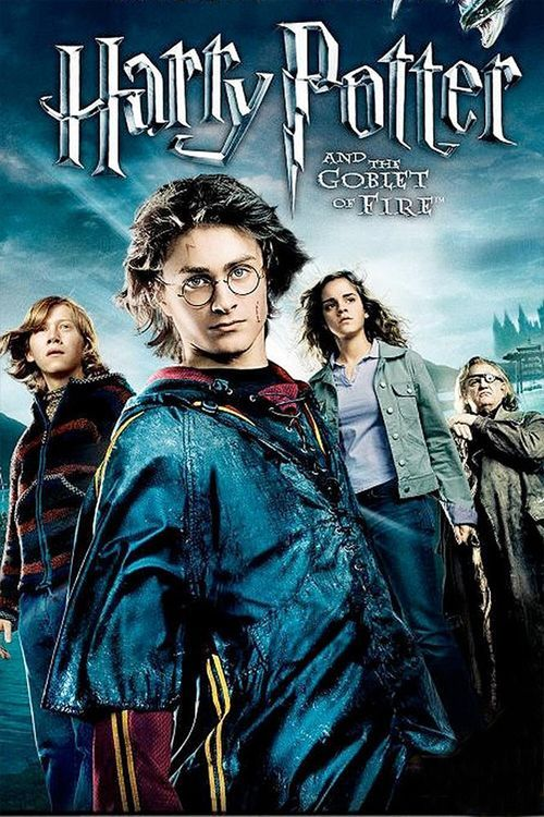 Harry Potter And The Goblet Of Fire Film Harry Potter Goblet Harry Potter Movies Harry Potter Movie Posters