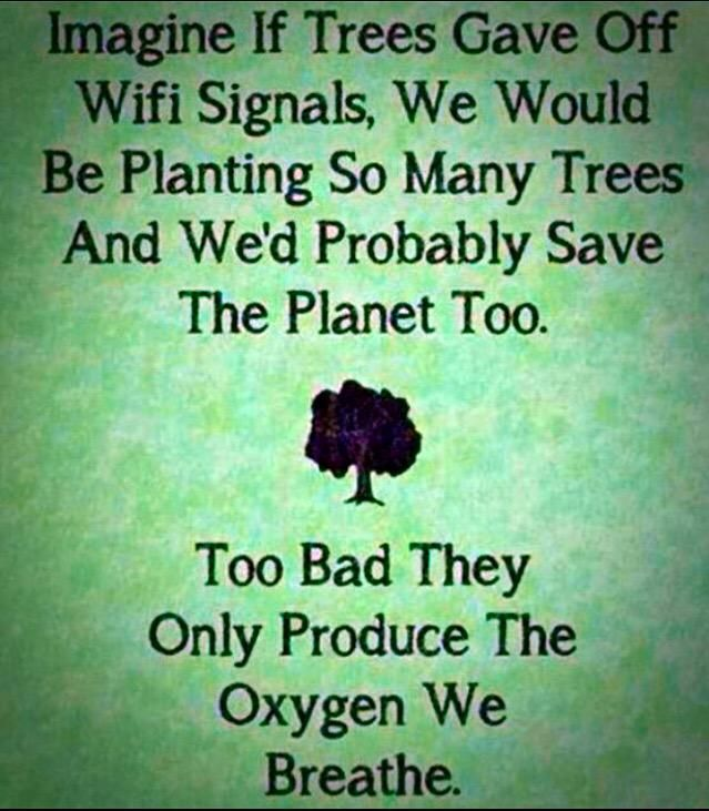 Raw Vegan Queen On Twitter Earth Quotes Environment Quotes Nature Quotes