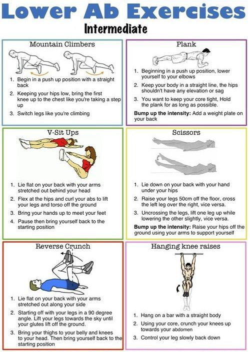 14 Lower ab workout routine for men and women | Lower ab ...