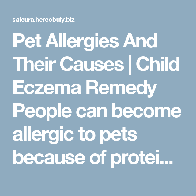 Pet Allergies And Their Causes