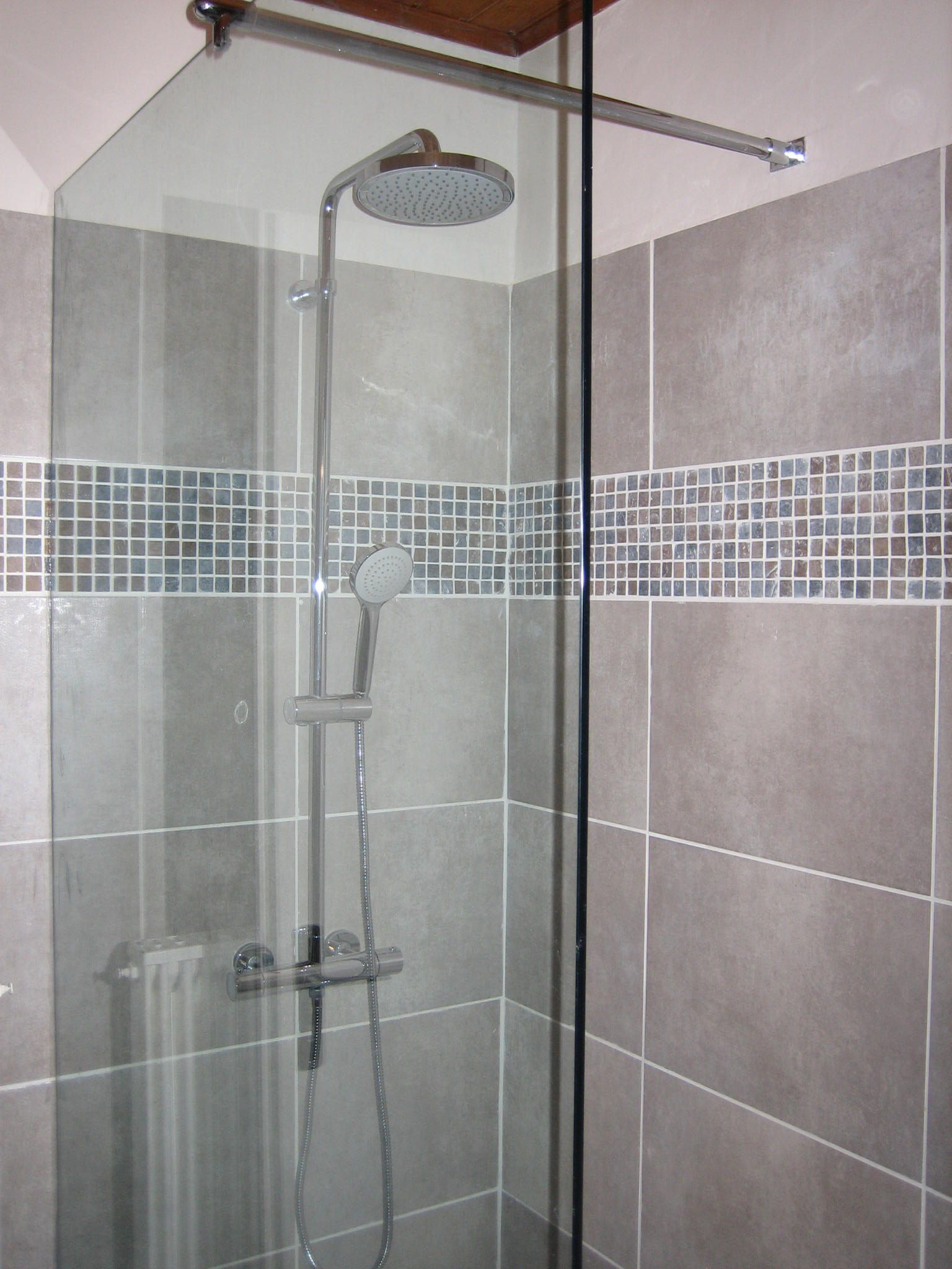 Only One Fixture With Hand Shower And Fixed Head Very Cost