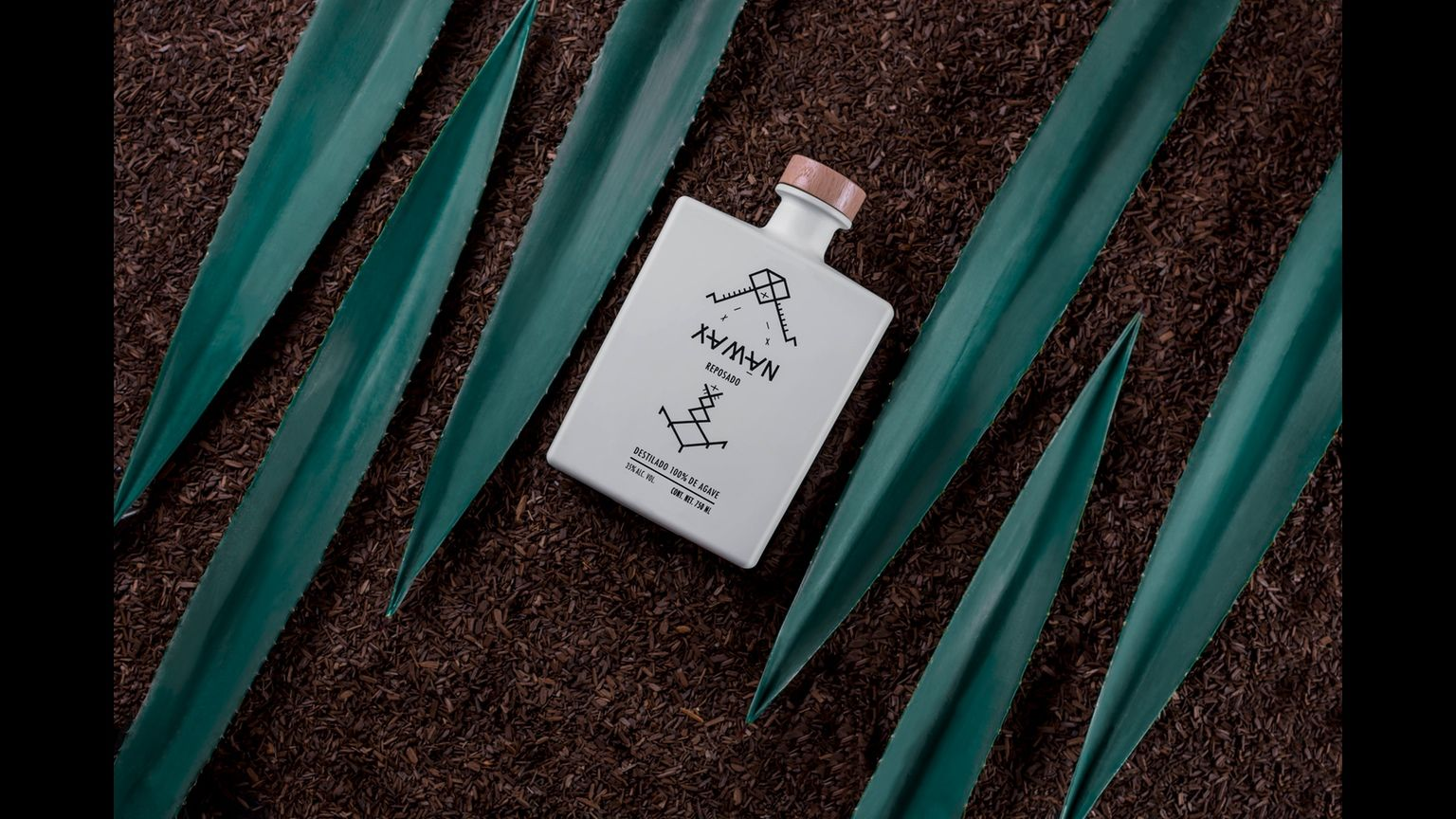 Xamān comes as a result of a perfect blend from two of the most famous agave plants: Azul Tequilana Weber and Angustifolia (Espadín)