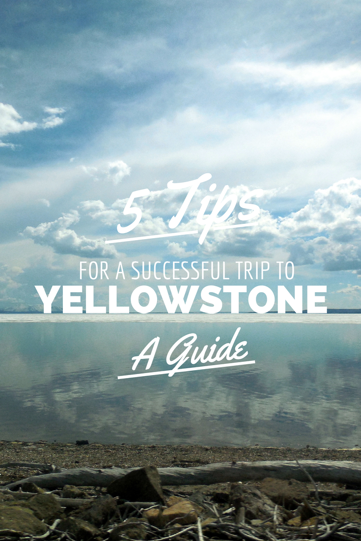 the college gardener: yellowstone camping trip top 5 tips | my