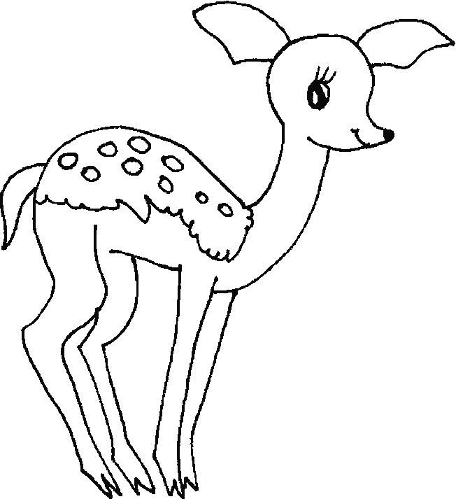 Tiger Coloring Pages For Kids Preschool And Kindergarten Deer Coloring Pages Bear Coloring Pages Bee Coloring Pages