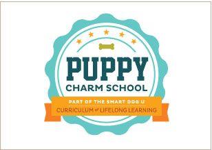 Logo Design C Think Baseline For Smart Dog University S Puppy