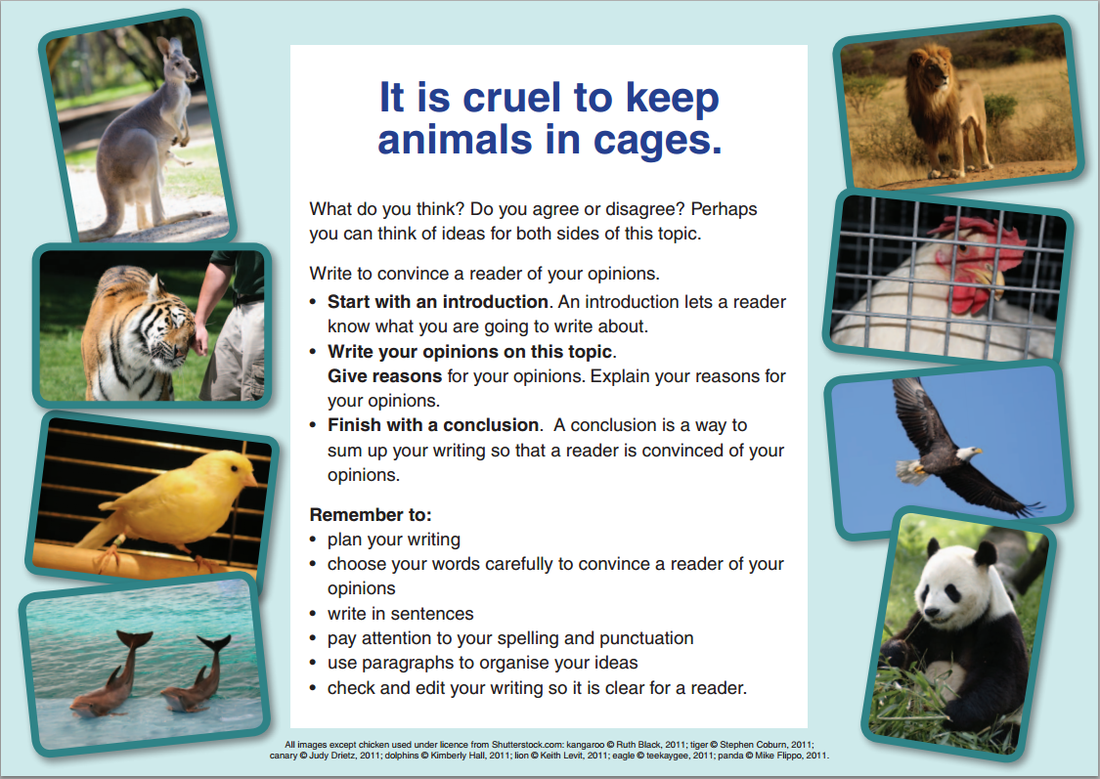 Animals In Captivity