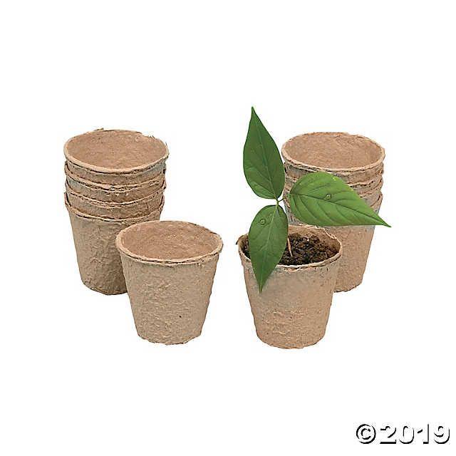 Diy Biodegradable Pots: DIY Watch It Grow Seed Pots