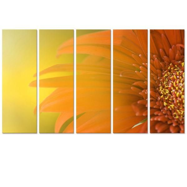 "Canvas Art - Flower Canvas Print 36"" X 60"" Five Panel Framed Wall ..."