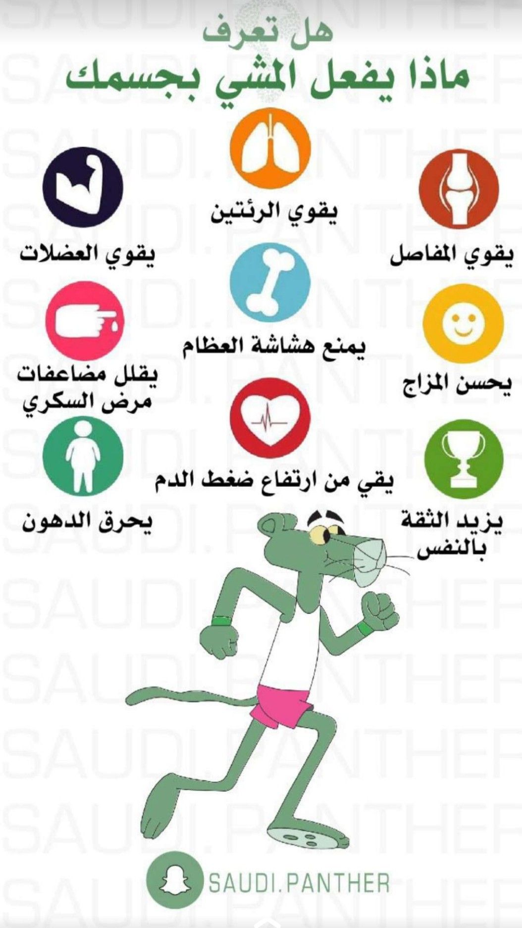 Pin By Ibrahim Ahmed On شموخ Gym Workout For Beginners Health Fitness Nutrition Sports Physical Therapy