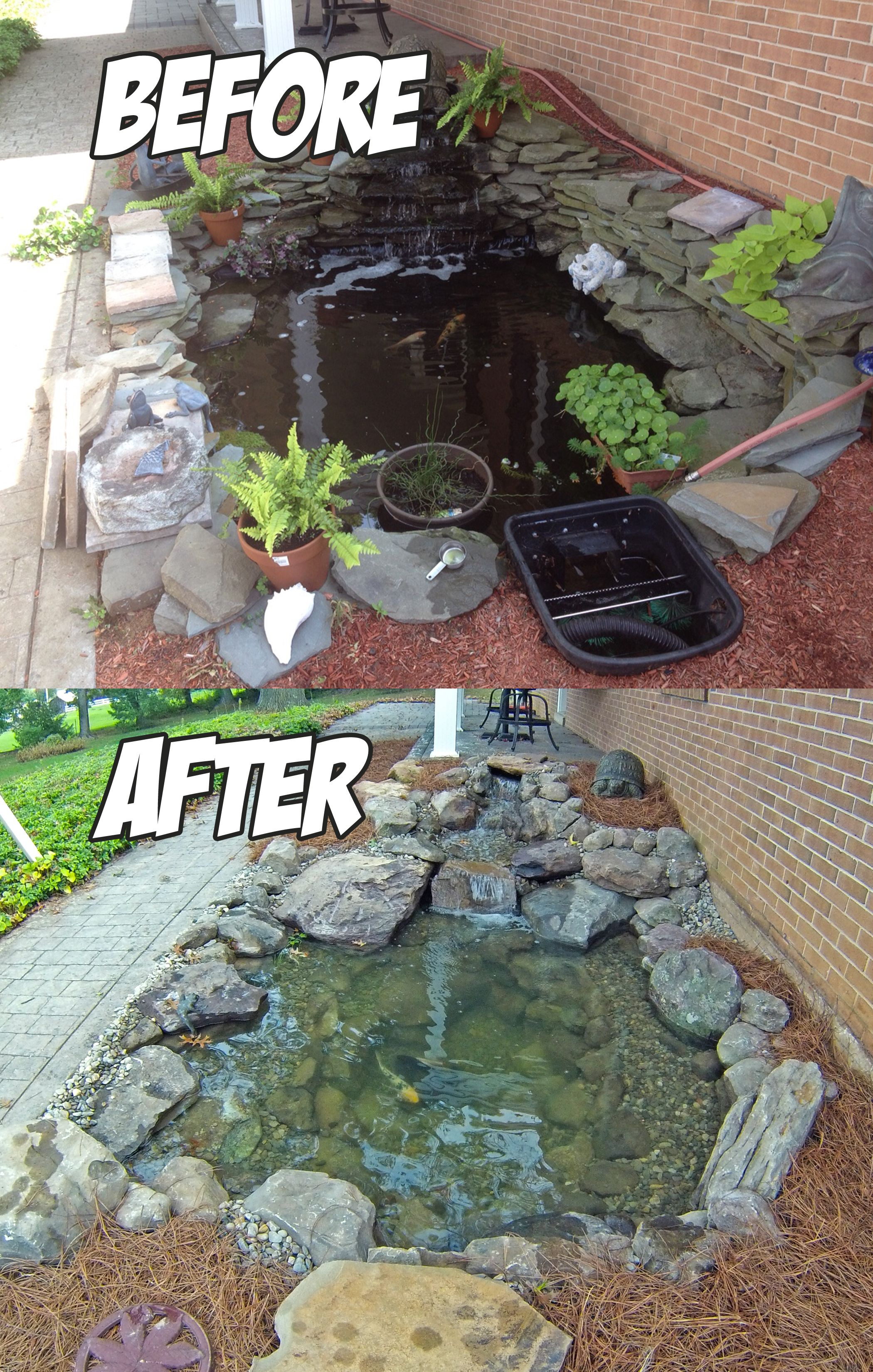 Front Yard Pond Install (Before U0026 After)   C.E. Pontz Sons Landscape  Contractors