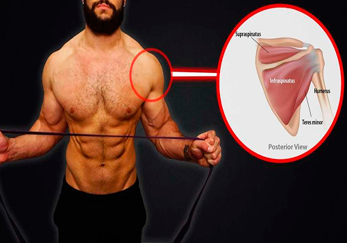5 Most Common Shoulder Training Mistakes - True ...