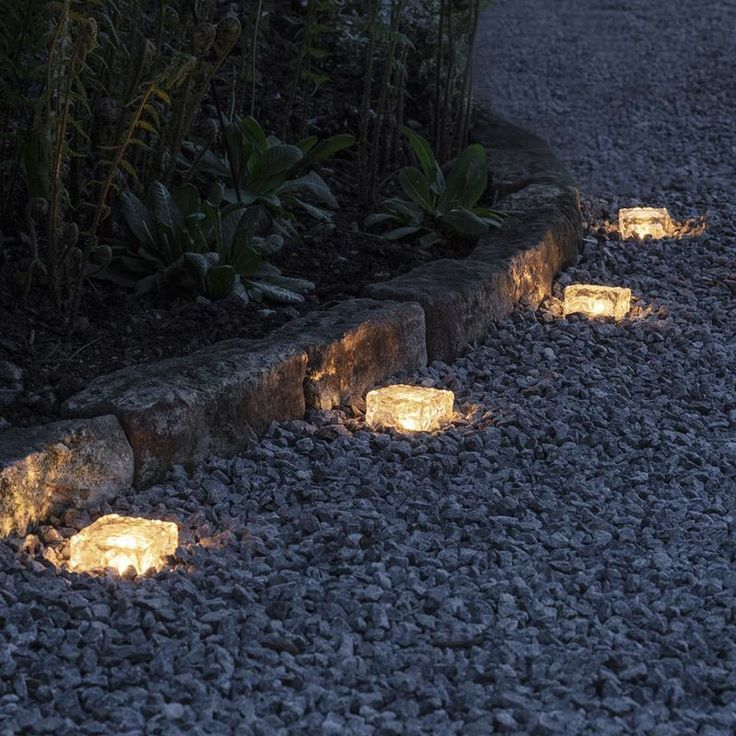 Photo of Garden Paths Lighting Shrubs