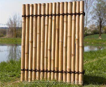 Bambus Sichtschutzzaun Apas4 gelblich, 150 x 120cm (mit