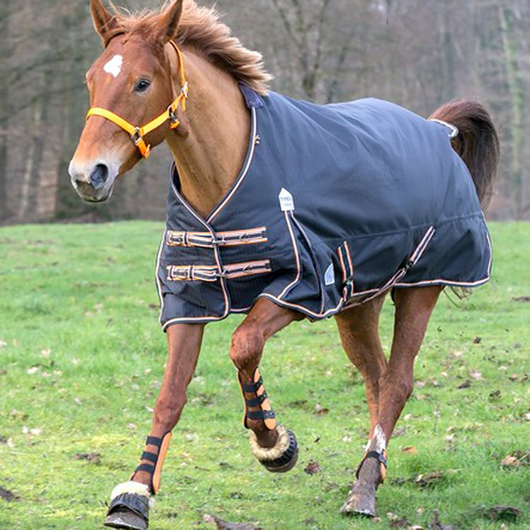 The Equi Theme Tyrex 1200d Lightweight Turnout Rug Is A High Performance In