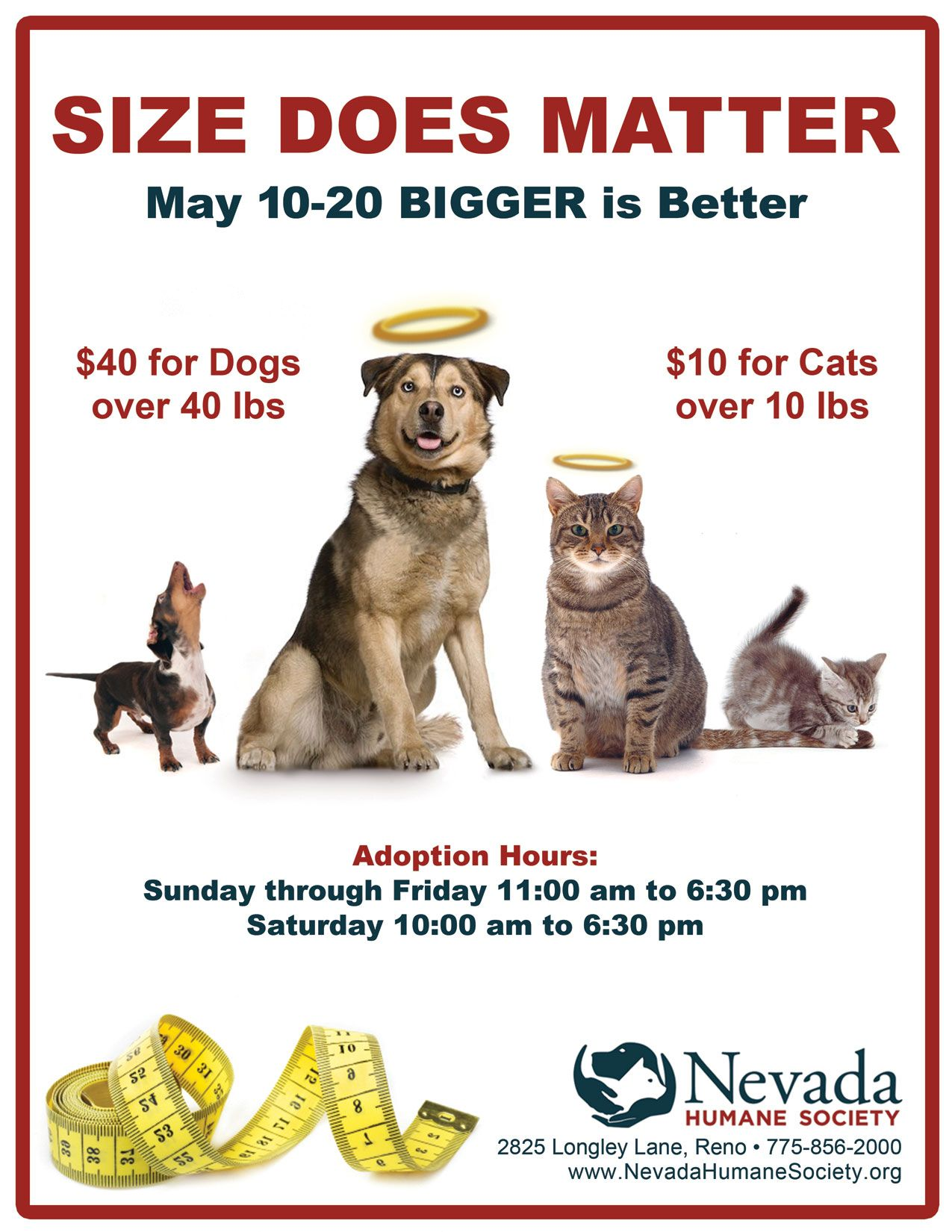 Size Does Matter But We Love All Pets Big And Small The Nhs Size Does Matter Adoption Promotion May 10 20 2012 Animal Shelter Adoption Animals