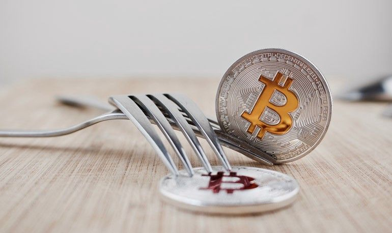 what are forks in cryptocurrency