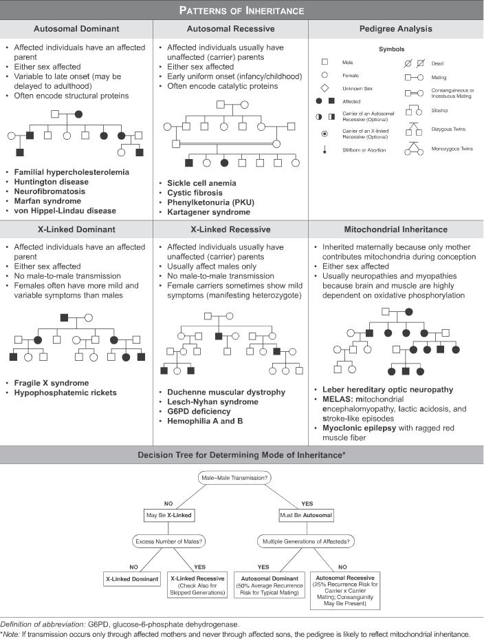 Patterns Of Inheritance Usmle Step 1 Qbank Medical School