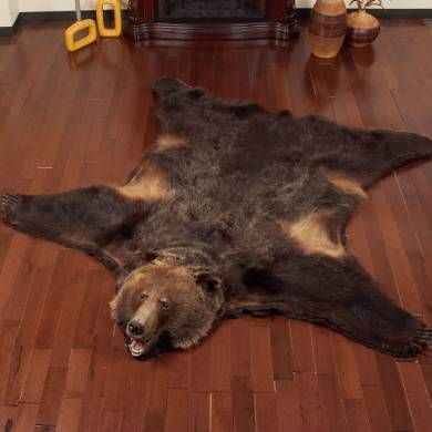 Buy Grizzly Bear Rugs For Sale
