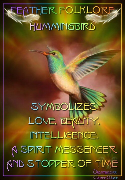 Hummingbird Symbolizes Love Beauty Intelligence A Spirit