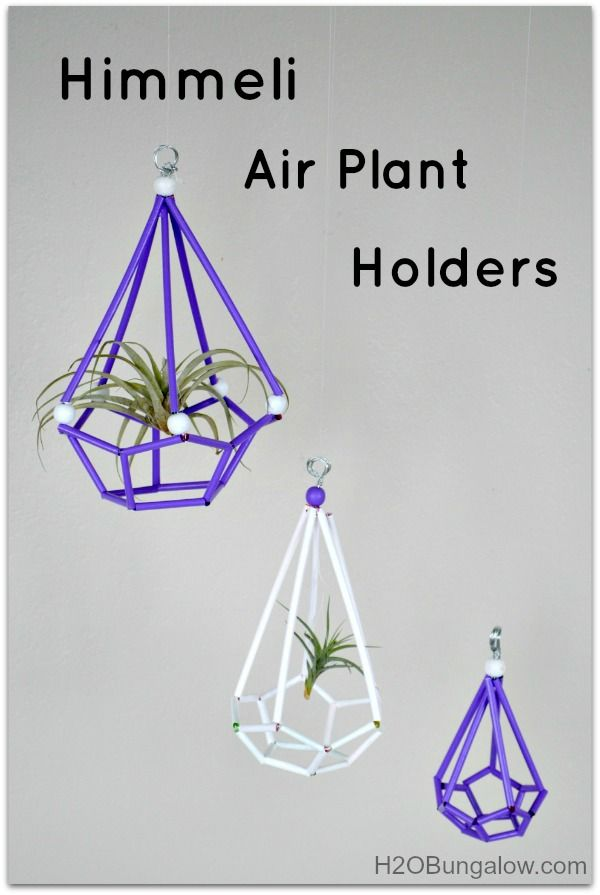 Himmeli Air Plant Holders West Elm Knockoff For A Fraction Of The Cost Www H2obungalow
