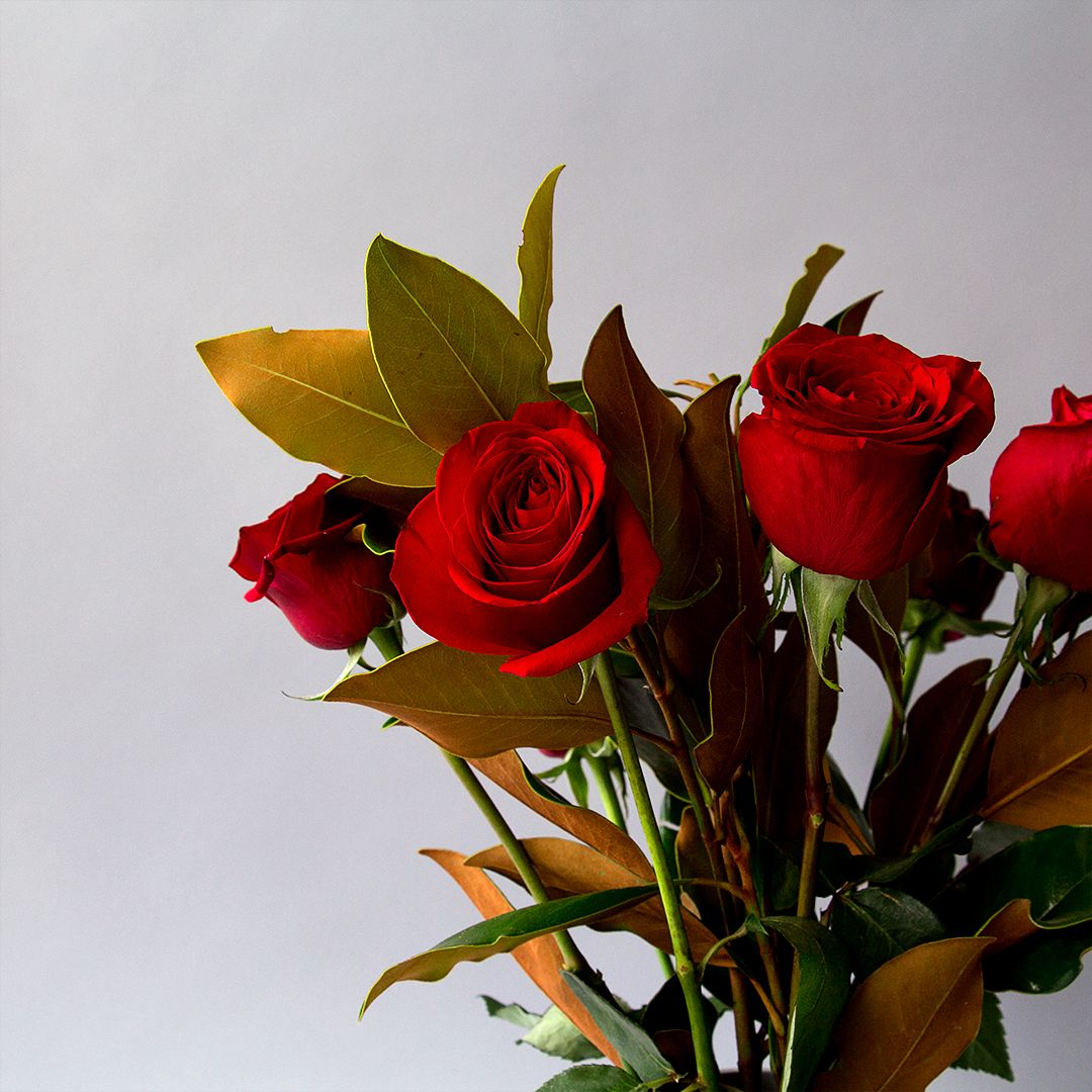Show your love with roses! See our beautiful arrangements