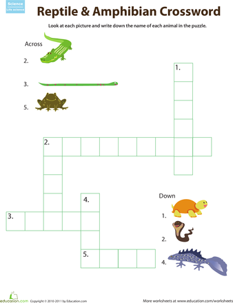 critter crossword reptiles and amphibians pinterest amphibians worksheets and teaching ideas. Black Bedroom Furniture Sets. Home Design Ideas