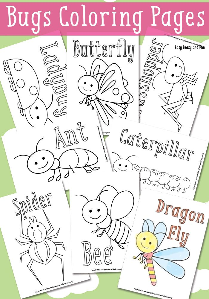Little Bugs Coloring Pages for Kids | Páginas para colorear ...