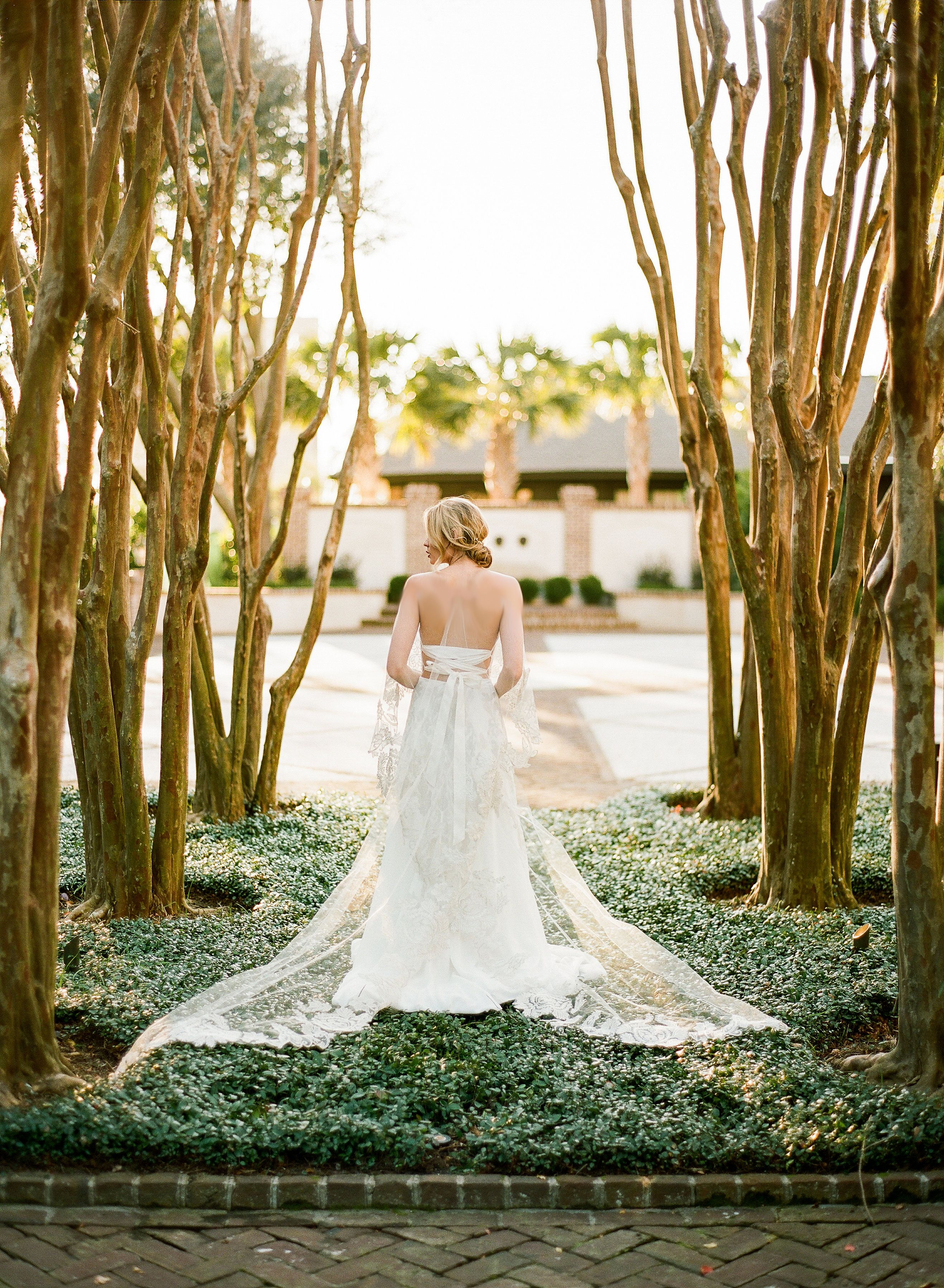 Bowieite | Emily Kotarski Bridal | Strapless off-the-shoulder lace and chiffon gown with lace appliqué, ballet back, and cape