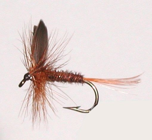 Dry Trout Fly Patterns | flies | Fly fishing tips, Saltwater flies